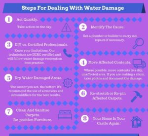 Steps For Dealing With Water Damage infographic 8 steps Copy