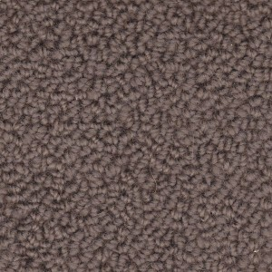 carpet cleaning maintenance